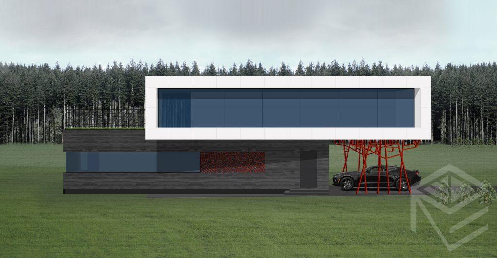Architekte Svajone Pociene namo projektas XX
